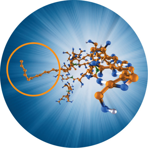 HYMOVIS® has a unique molecular structure that results in enhanced biomechanical properties. (Photo: Business Wire)
