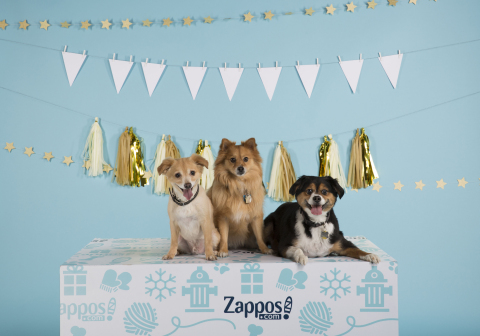 "Zappos.Com and Best Friends Animal Society Announce ""Home for the Pawlidayz"" Pet Adoptions (Photo: Business Wire)"