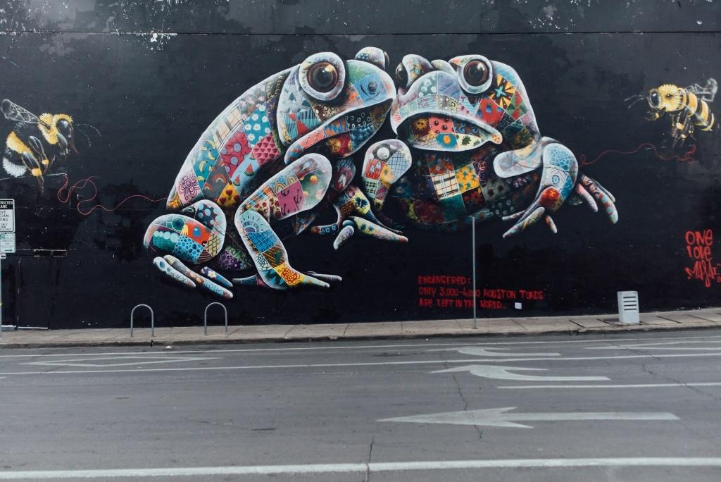 Colorful mural of houston toad illuminates downtown austin for Austin mural tour