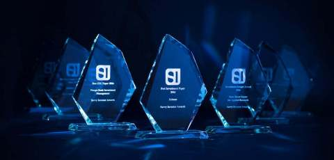 Savvy Investor Awards - Winners' Trophies (Photo: Business Wire)
