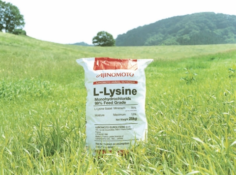L-Lysine for feed (25kg bag) (Photo: Business Wire)