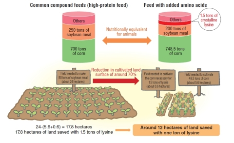 *2 Economizing on soybean meal and land with the use of feed-use lysine (Graphic: Business Wire)