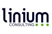 https://www.linium.com/financialservices