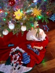 A puppy sleeps under his new family's Christmas tree. With 41 percent of Canadian dog owners welcoming a new puppy around the holidays, PetSmart® Canada can help new puppy parents with tips on transition, toys, nutrition and more. (Photo: Business Wire)