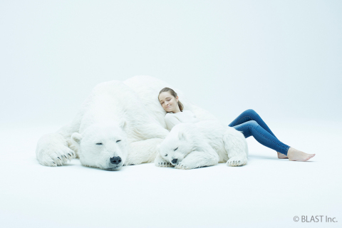 Polar bear 1 (Photo: Business Wire)