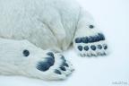 Polar bear 5 (Photo: Business Wire)