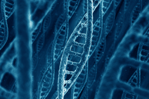 DNA 3D rendering (Graphic: Business Wire)