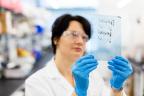 Bioverativ scientist (Photo: Business Wire)