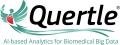 Quertle LLC