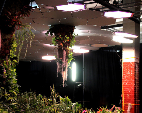 Lighting Science worked to develop and install 24 adjustable LED lighting solutions into the Lowline canopy at the lab. (Photo: Business Wire)