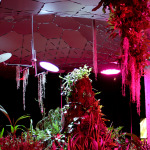 Each Lighting Science panel installed at the Lowline Lab features three spectrums: one that provides soft-white light, one that mimics daylight, and one that includes Lighting Science's patented VividGro(TM) LED indoor grow light spectrum technology. (Photo: Business Wire)