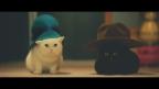 U-CAN crea un commovente video di gatti usando i materiali del corso di corrispondenza di U-CAN