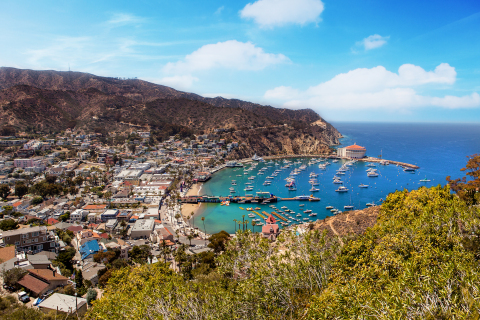 Aerial View of Catalina Island. (Photo: Business Wire)