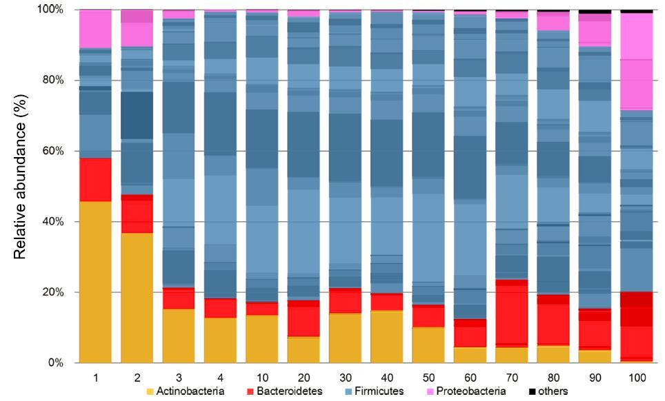(Fig.2) Sequential changes of the gut microbiota accompanying age increase (Graphic: Business Wire)