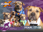 Pawsplay Photo Contest at Salt Lake Comic Con FanX™ (Photo: Business Wire)