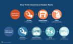 How TE2's mCommerce Module Works (Graphic: Business Wire)