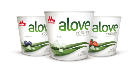 ALOVE Japanese-Style Aloe Vera Yogurt (Photo: Business Wire)