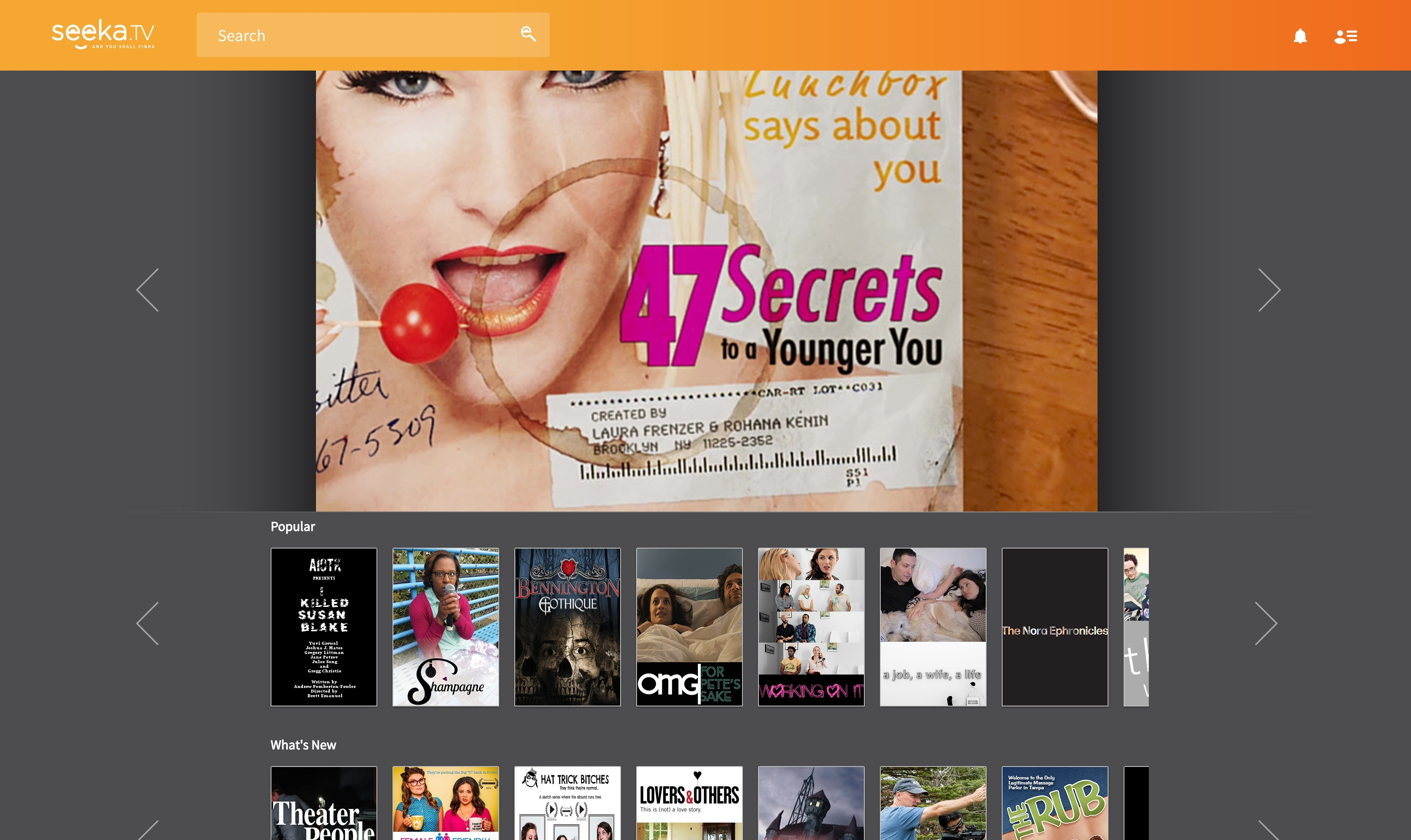 Seeka TV's browser-based interface (Photo: Business Wire).