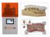 EnvisionTEC gibt bei größter Dentalmesse der Welt Vorschau auf neues Material für den 3D-Druck indirekter Bonding Trays