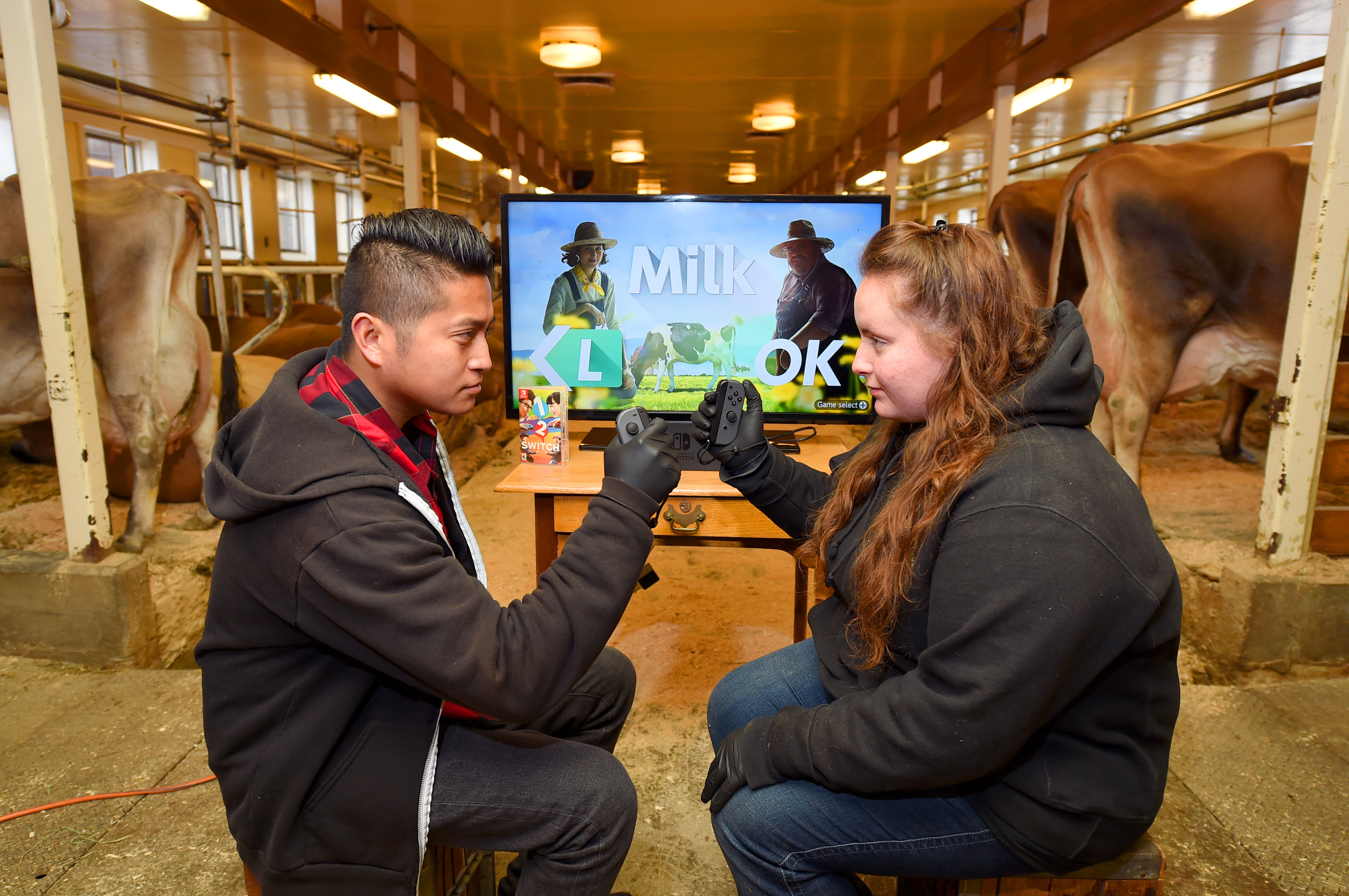 In this photo provided by Nintendo of America, gamers from Nintendo go head to head against real dairy farmers to see whose cow-milking skills reign victorious in Milk, one of 28 fun games in the 1-2-Switch game for the Nintendo Switch system. Players enjoyed several friendly matches in various locations throughout Billings Farm & Museum in Woodstock, Vermont, on March 29. 1-2-Switch and the Nintendo Switch system are now available worldwide. (Photo: Business Wire)