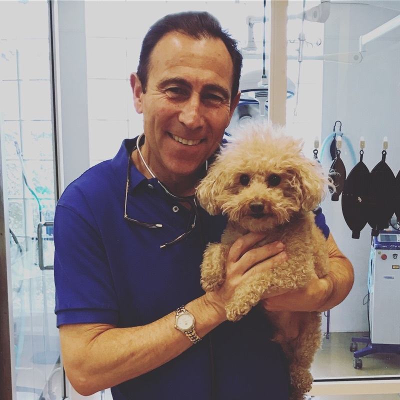 Dr. Jeff Werber, veterinary medical journalist and owner and chief medical director at Century Veterinary Group in Los Angeles. Photo: Zoetis.