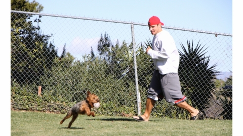 Nick Lachey plays outside with his dog, Wookie. Photo: Zoetis.