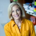 Dr. Jennifer Pietenpol named Chief Scientific Advisor for Susan G. Komen (Photo: Business Wire)