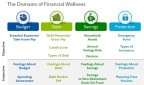 Financial Wellness domains and scoring measures (Photo: Business Wire)