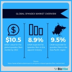 An overview of the global spandex fibre market. (Graphic: Business Wire)