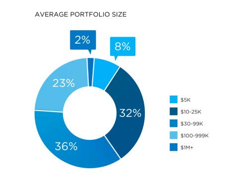 Portfolio Demographics of YieldStreet Investors