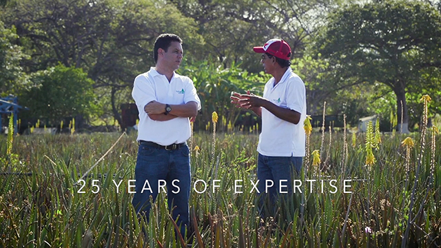 Mannatech is proud to partner with Natural Aloe Costa Rica to develop Manapol in one of the most luscious and fertile rainforest locations on earth.