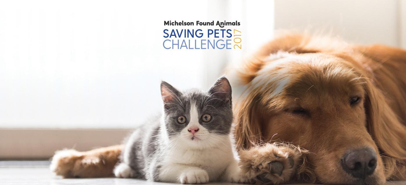 Michelson Found Animals Saving Pets Challenge 2017. (Photo: Business Wire)