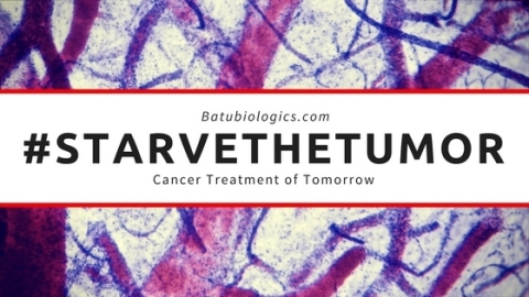 Batu Biologics seeks to #starvethetumor by training your body to attack and kill the tumor vasculature with the ValloVax immunotherapy (Graphic: Business Wire)