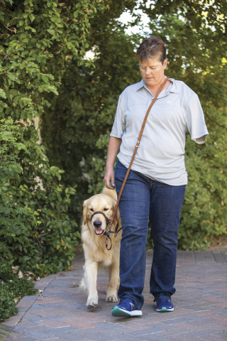 A disabled veteran walks with a service dog by her side. Service dogs are a type of assistance dog specifically trained to help people who have disabilities such as visual impairment, hearing impairment, mobility impairments and Post Traumatic Stress Disorder. Service Dogs for Heroes is a nonprofit organization dedicated to training and placing service dogs with veterans who have bravely served America and may now be in need of the support a skilled service dog can provide. Through a new fundraising program established at all 1,388 PetSmart stores across the U.S., PetSmart shoppers can easily donate to this important cause Memorial Day (May 29) through Independence Day (July 4) at the checkout registers with a goal to raise $1 million for Service Dogs for Heroes. (Photo: Business Wire)