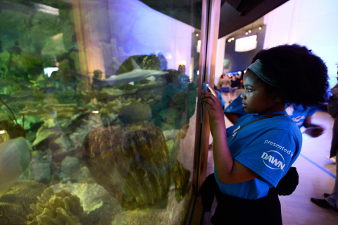 Keanue Akbar, 12, a student at Memorial Junior High School, takes a photo at Shedd Aquarium as part of a special experience provided to her class as the winner of Dawn and Shedd's NextGen Animal Responders program on Thursday, May 25, 2017 in Chicago. (Photo by Brian Kersey/Invision for Dawn/AP Images)