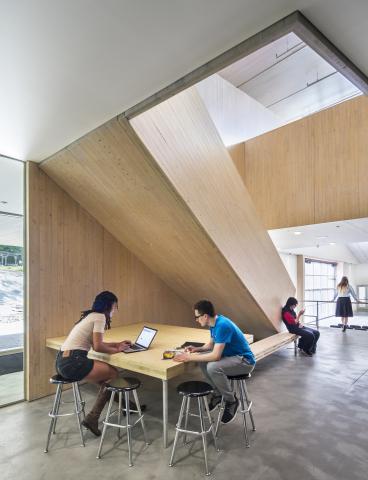 Common Ground High School was the 2017 WoodWorks Wood Design Award Winner for Wood School Design. Architect: Gray Organschi Architecture. (Photo: David Sundberg)