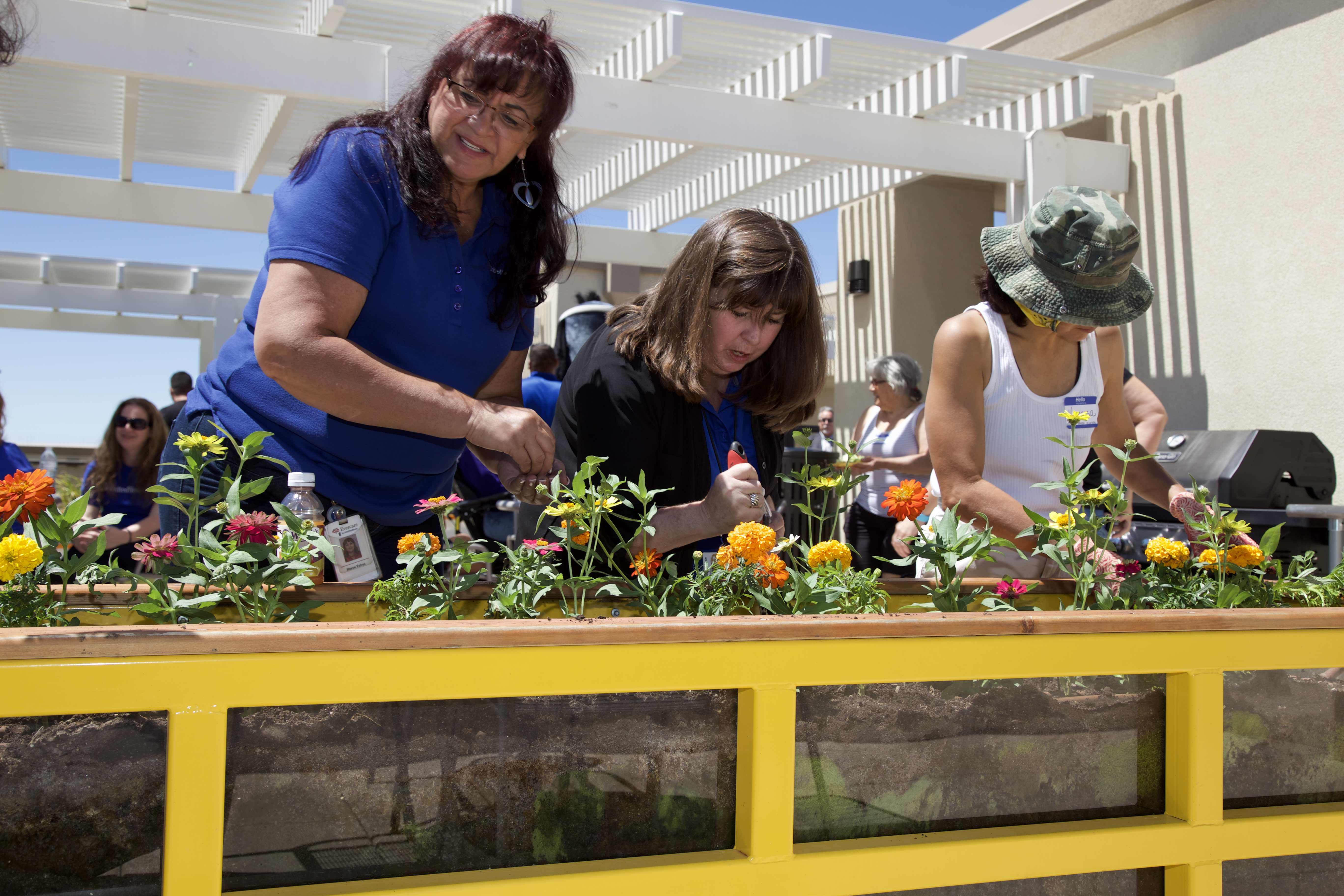 UnitedHealthcare employees and residents of The Imperial Building plant flowers for pollination for a rooftop garden funded through a grant by UnitedHealthcare and YES Housing. L to R: UnitedHealthcare employees Sharon Tafoya and Mary Ann Hennigan, and The Imperial Building resident Vanessa Sanchez (Photo: David Martinez).