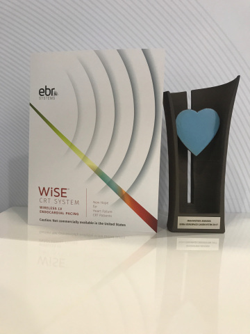 Favorite Innovation, 2017 Cardiostim Innovation Award (Photo: Business Wire)