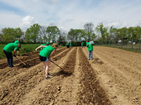 Ohio: Go Green Employee Resource Group volunteers from Macy's Central Office Cincinnati and Springdale locations prepared fields at Gorman Heritage Farm for Earth Week 2017. (Photo: Business Wire)