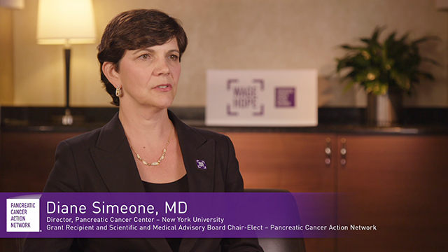 In 2017, the Pancreatic Cancer Action Network (PanCAN), in partnership with generous donors, awarded 17 grants to 21 researchers at 12 institutions for a projected investment of $4.9 million to support pancreatic cancer research across the country. PanCAN's 2017 grants portfolio is thoughtful and comprehensive, including innovative approaches to unlocking the biology of the disease, improving patient treatments and outcomes and accelerating early detection methods.