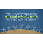 """Este año, la campaña """"Conserva Energía SoCal"""", comienza con un espectáculo de luces de la Rueda de la Fortuna en el Muelle de Santa Mónica"""