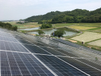 Solar panels featuring Direct Wafer products make up a new commercial installation in Japan (Photo: Business Wire)
