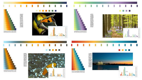 Enhanced color palettes for data discovery with MicroStrategy. (Graphic: Business Wire)