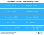 BizVibe's Top 20 Largest Beef Exporters in the World (Graphic: Business Wire)
