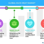Top 5 Vendors in the Global Duck Meat Market from 2017-2021: Technavio
