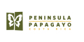 https://peninsulapapagayo.com/