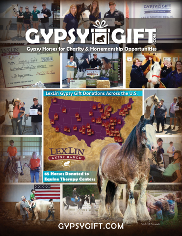 LexLin Gypsy Ranch donates 65 Gypsy Gift horses to benefit equine therapy centers coast to coast (Photo: Business Wire)
