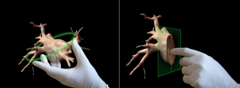 image intimacy™ - hand's reach precise interaction within the hologram: rotate, move, zoom, mark, measure, all in true 3D space  (Photo: Business Wire)