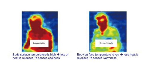 Photo 3: Sensing a person's level of thermal sensation, under the same environment, using the infrared array sensor (Graphic: Business Wire)