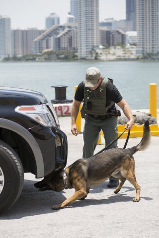 A canine and its handler at a recent session designed to increase the effectiveness of explosive detecting canine teams. (Photo: Business Wire)